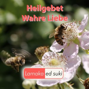 Heilgebet Wahre Liebe Cover